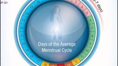 الطبيعي وغير الطبيعي في دورتك الشهرية