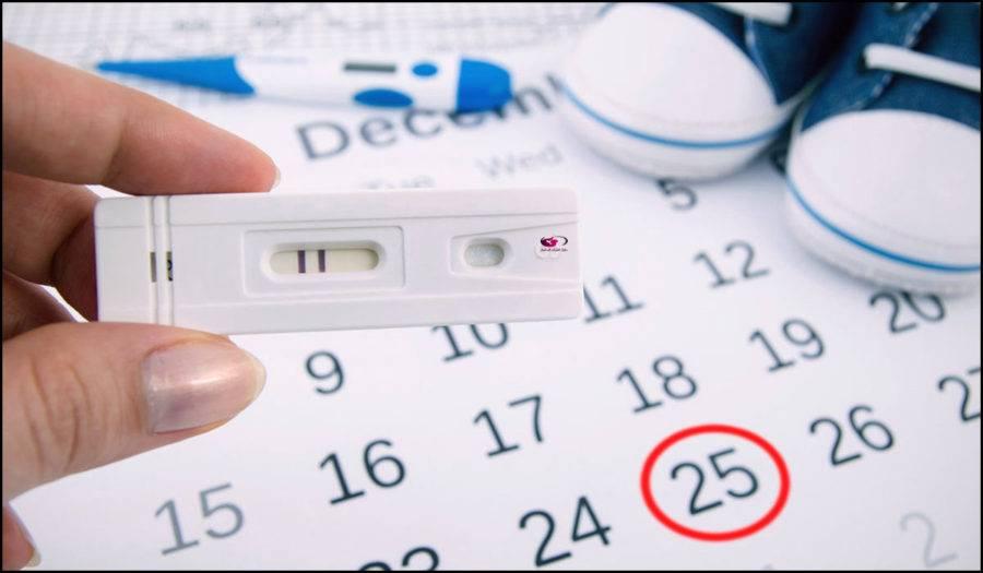 حاسبة الحمل بالاشهر