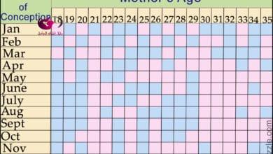 صورة الجدول الصيني للحمل وتحديد نوع الجنين الصحيح 2019