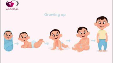 Photo of مراحل نمو الطفل الرضيع : 4 مراحل لنمو طفلك تعرفي عليها
