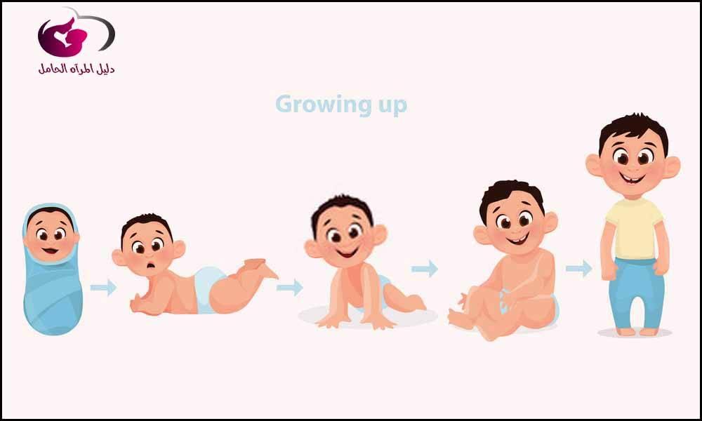 مراحل نمو الطفل الرضيع 4 مراحل لنمو طفلك تعرفي عليها دليل المرأة الحامل