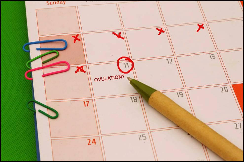 اسباب عدم انتظام الدورة الشهرية