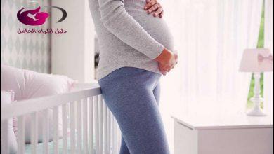Photo of اعراض الحمل فى الشهر الرابع فى ولد وكيفية تحديد نوع الجنين