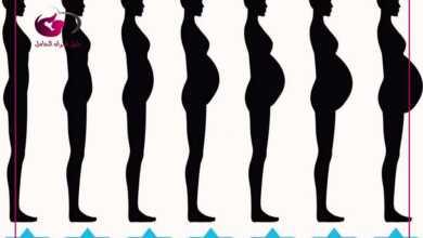 Photo of مدة الحمل..تعرفي على طريقة حسابها وأهم مراحل الحمل