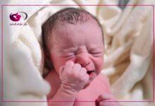 Photo of إليكي طريقة علاج امساك الرضع بزيت الزيتون